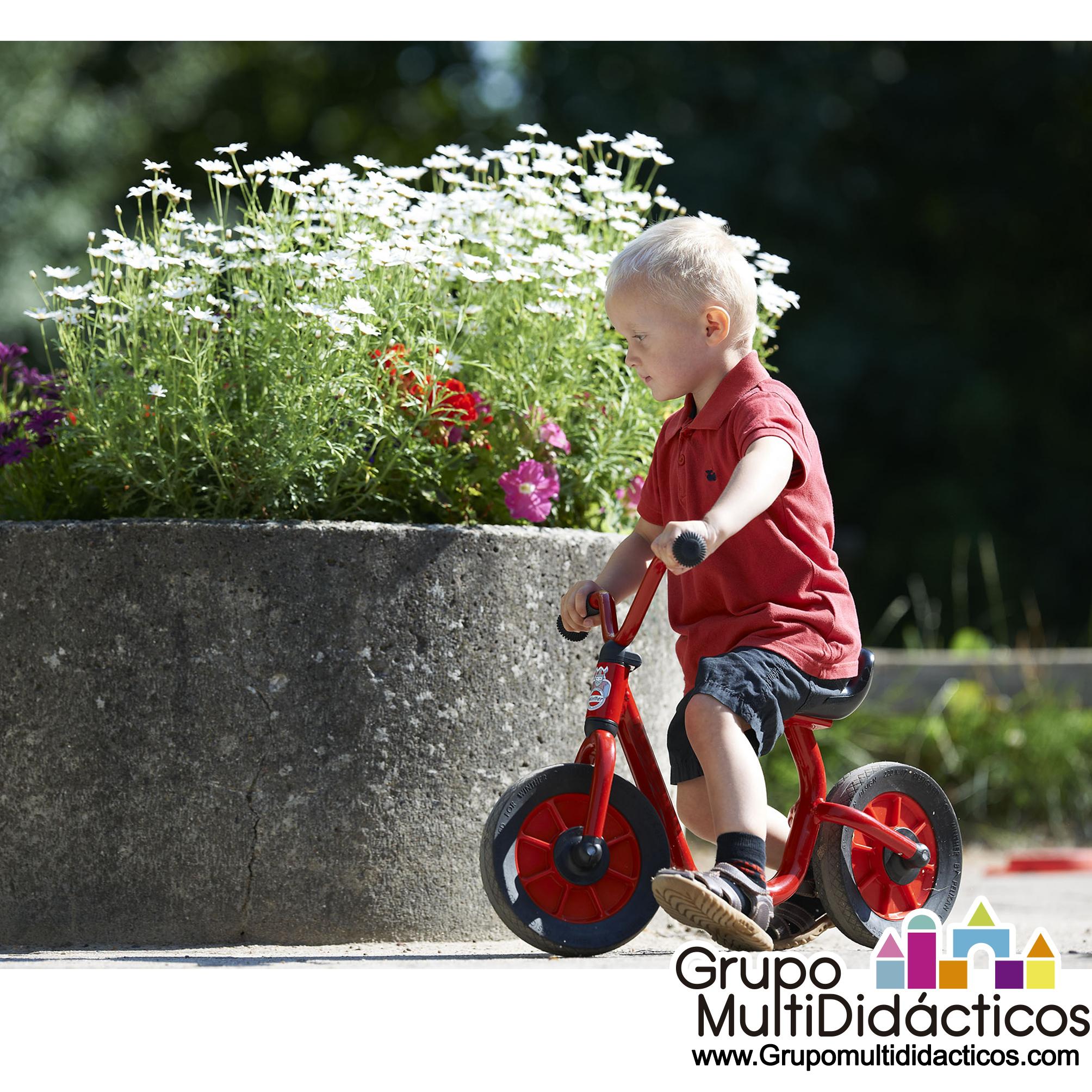 https://multididacticos.com/images/productos/peq/bicicleta%20sin%20pedales%2013b.jpg