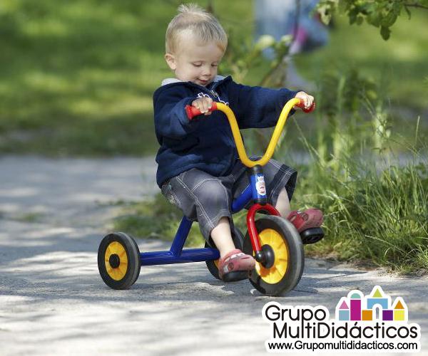 https://multididacticos.com/images/productos/peq/triciclo%2011b.jpg