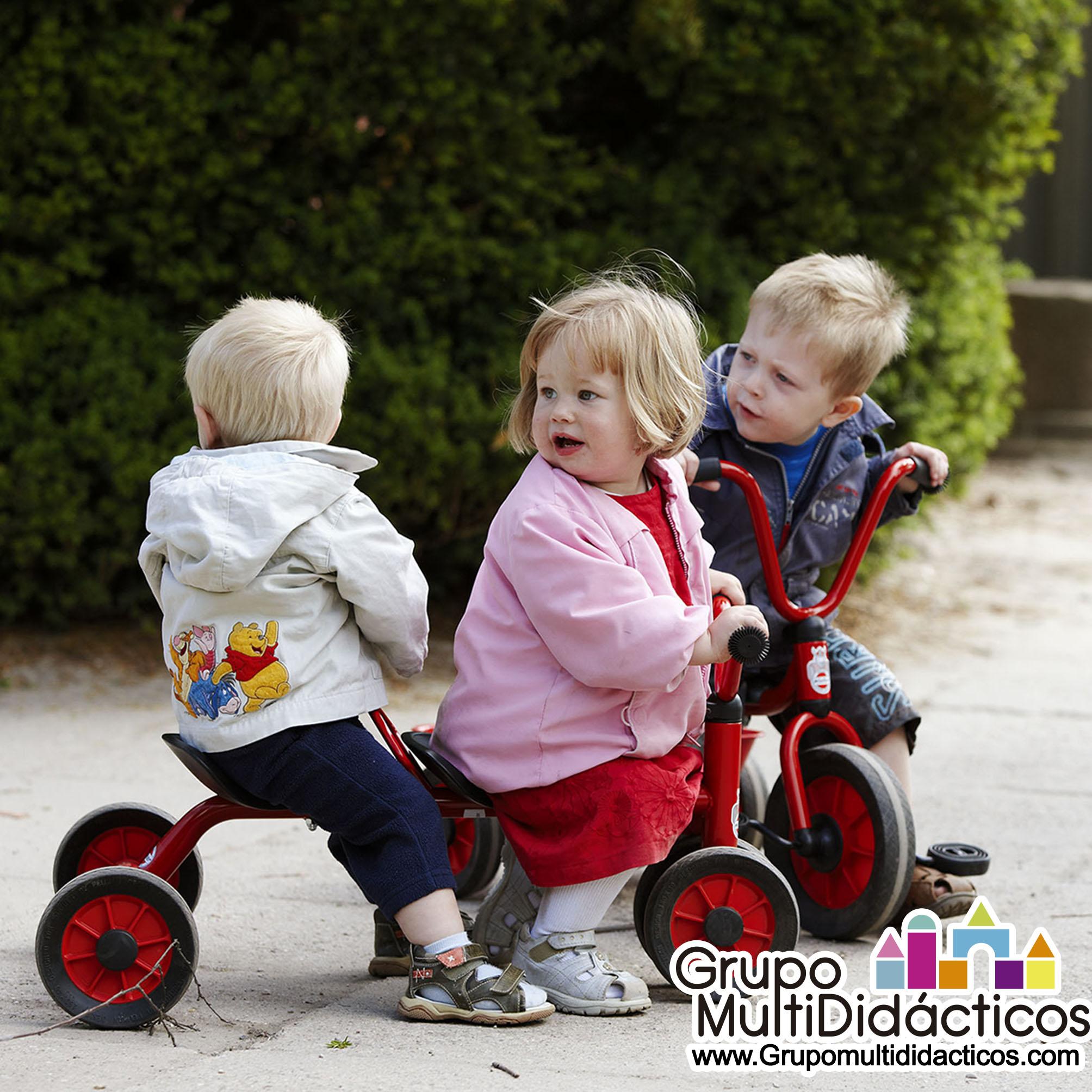https://multididacticos.com/images/productos/peq/triciclo%20tanden%20doble%2048b.jpg